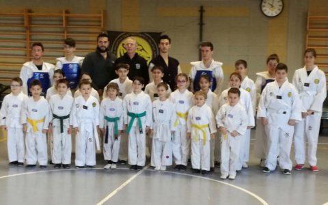 Esami Taekwondo Bambini